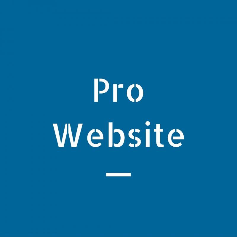 Pro-Website-800x800 Pro Website